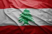 Flag of Lebanon — Stock Photo