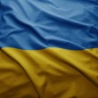 Flag of Ukraine — Stock Photo #32485467