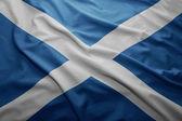 Flag of Scotland — Stock Photo