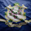 Stock Photo: Flag of Connecticut state