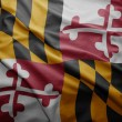 Flagge des Staates maryland — Stockfoto