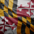 Bandeira do estado de maryland — Foto Stock
