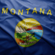 Flag of Montana state — Stock Photo
