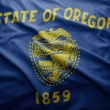 Stock Photo: Flag of Oregon state