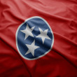 Flag of Tennessee state — Stock Photo