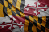 Flag of Maryland state — Stock Photo