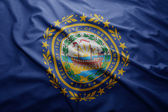 Flag of New Hampshire state — Stock Photo