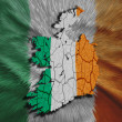 Irish Map — Stock Photo