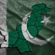 Pakistani Map — Stockfoto