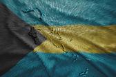 Bahamian Map — Stock Photo