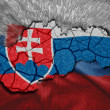 Slovak Map — Stock Photo