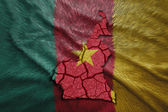 Cameroon Map — Stock Photo