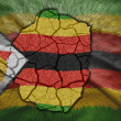 ZimbabweMap — Stock Photo #34255973