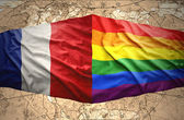 French and Rainbow flags — Stock Photo
