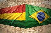 бразилия и боливия — Стоковое фото
