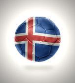 Icelandic Football — Stock Photo