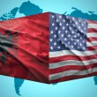 Waving Albanian and American flags — Stock Photo #51612803