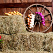 Interior of building of village. Wheel, hay, bucket, — Stock Photo #21060093