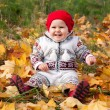 Little cute baby girl on a background of autumn leaves - Stock Photo