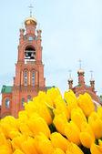 Kiev kutsal koruma holosiivska çöl. ukraynalı ortodoks kilisesi. — Stok fotoğraf