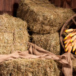 Interior of a rural farm - hay, wheel, corn. — Stock Photo