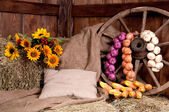 Interior of a rural farm - hay, wheel, onions, corn. — Stock Photo