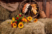 Interior of a rural farm - hay, wheel, garlic, onions, sunflower — Photo