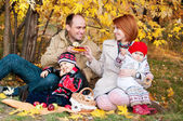 Family picnic. Family of four in the autumn forest — Stock Photo