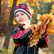 Two year old boy with a bunch of autumn leaves — Stock Photo