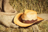 Cowboy hat lying on straw. — Stok fotoğraf