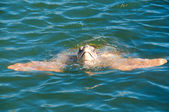 Turtle Caretta caretta swim in water, excursion in Turkey — Stock Photo