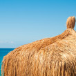 Thatched roof bungalows closeup — Stock Photo