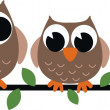 Three brown owls — Stock Vector #13281356
