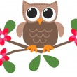 A cute little brown owl — Stock Vector