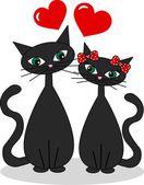 Iki kedi aşık — Stok fotoğraf