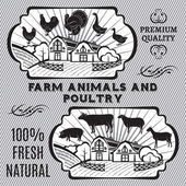 Farm animals and poultry — Stockvektor