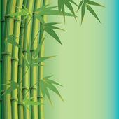 Background with bamboo leaves and stems — Stock Vector