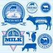 Set of icons on the theme of cow's milk — Stock Vector