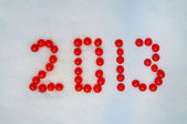 Viburnum berries which is written on the snow — Stock Photo
