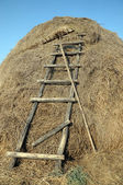Rakes and stairs to the haystack — Stock Photo