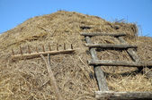 Rakes and stairs to the haystack — Stock fotografie