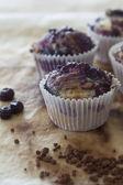 Muffin mirtillo — Foto Stock