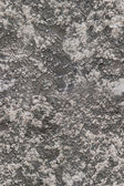 Seamless rough texture wall plaster — Stock Photo