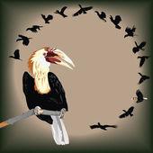 Walden's Hornbill — Stock Vector