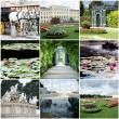 Collage of ViennAustria — Stock Photo #23759919