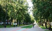 The famous city park in Nizhny Novgorod — Stock Photo