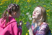 Girl and the woman blow at dandelions — Стоковое фото