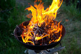 Burning firewood in barbecue outdoors — Photo