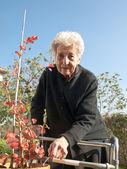 Elderly woman — Stock Photo