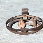 Rusty trap — Stock Photo #15344083